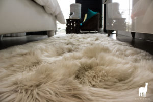 Suri Alpaca Rug Collection Scene Image